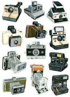Polaroid cameras, artfully presented.