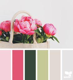 Peony Palette   design seeds   Bloglovin'