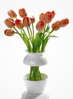 Креативные цветочные вазы