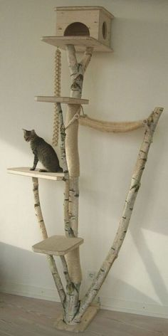 Cats Toys Ideas - Love this kitty pad! My cat would love this, and we have this type of tree in our area. - Ideal toys for small cats Diy Cat Tree, Ideal Toys, Cat Room, Cat Condo, Small Cat, Animal Projects, Diy Projects, Cat Furniture, Furniture Stores