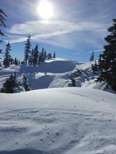 Mt. Seymour, North Vancouver, BC