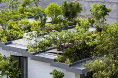 Arquitetos levam o jardim para o telhado em casa no Vietnã