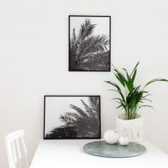 Die Palm Prints (2-er Set) sind auf 250g/qm FSC Papier gedruckt und werden ohne Rahmen, gerollt geliefert. Maße: 30 cm x 40 cm