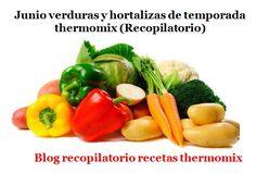 Recopilatorio de recetas thermomix: Junio verduras y hortalizas de temporada 2017 thermomix (Recopilatorio)