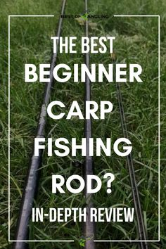 Is the Daiwa Ninja Feeder the best carp fishing rod for beginner anglers? Take a read a this post to find out. #carpfishing #rodreview