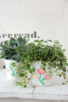 Urban Jungle Bloggers :: how to dress up your plants