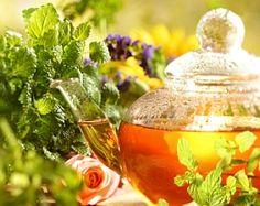 Най-добрите лечебни чайове (ІІ част)