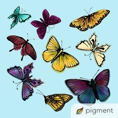 Color, Paintings, Colour, Colors