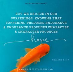 Romans 5:3-4 - Anchored Hope Daily Scripture Reading and Journal