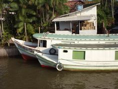 https://flic.kr/p/dMvL4n | Barca das Letras Ilha do Marajó São Sebastião da Boa Vista 21nov 042