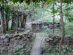 One of the garden paths leading away from the monastery, toward the cemetery. Photo by Hadrian Mar Elijah Bar Israel. Garden Paths, Garden Bridge, The Monks, Our Lady, Cemetery, Israel, Outdoor Structures, Bar, Plants