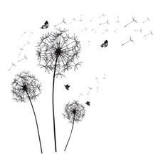 Shop for Unique Bargains Dandelion Butterfly Pattern Self-adhesive Removable Wall Sticker Paper Ornament x Get free delivery On EVERYTHING* Overstock - Your Online Art Gallery Shop! Dandelion Tattoo Design, Dandelion Tattoos, Dandelion Quotes, Tatoo Dog, Cartoon Wall, Butterfly Drawing, Dandelion Flower, Removable Wall Stickers, Paper Ornaments