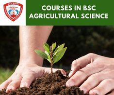 Get the best BSc in Agriculture & Horticulture Courses in India by Dolphin College. Visit us to find B Sc agriculture colleges course & B Sc agri details. Agricultural Science, College Courses, Private Sector, Colleges, Livestock, Horticulture, Students, Range, Marketing