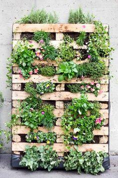 Domino Muster Ideen Kleinen Garten Einrichten | Paletten ... Vertikale Bepflanzung Ideen Tipps Garten