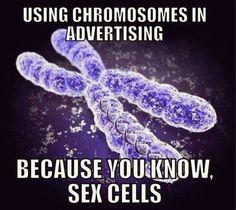 BAHAHAHAHA! Biology jokes =D