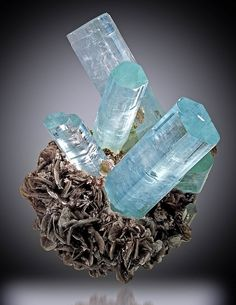 Natural aquamarine crystals on muscovite