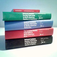Lot: Audubon Society Books - Birds, Butterflies, Reptiles, Amphibians, Insects