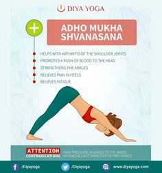 Benefits of Adho Mukha Svanasana Yoga or Downward Facing Dog Pose    MondayMotivation  AdhoMukhaSvanasana · Yoga NidraCitations De ... 5c4a50c087f