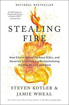Stealing Fire: How Silicon Valley, the Navy SEALs, and Maverick Scientists Are Revolutionizing the Way We Live and Work by [Kotler, Steven, Wheal, Jamie]