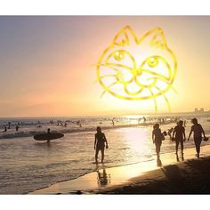 【megucafe9712】さんのInstagramをピンしています。 《秋にゃ~😸 location  神奈川県  #鵠沼海岸#海#空#風景#景色#猫#landscape#sea#sky#sunset#landscape#cat#natural#beautiful#amazing#東京カメラ部 #tokyocameraclub#japan_of_insta#instagramjapan#ig_japan#team_jp_#loves_nippon#bestjapanpics#airy_pics#japan_daytime_view#ptk_japan#lovers_nippon#icu_japan#s_shot》