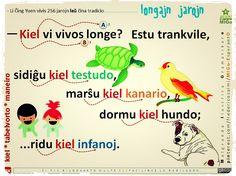 """""""kiel"""" > tabelvorto. maniero. #migo #esperanto #gramatiko #kia #kiel #tabelvorto #verbo #netransitiva #bestoj #vivo"""