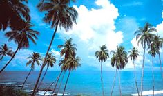 Indian tourism industry is fastest and the leading tourism industry in the world. India's climate contributes for attracting tourists worldwide. India provides every holiday theme desired by the tourists. India has lots of world heritage sites, pilgrimage sites as well as beautiful beaches and desert.