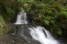 Upper Shepperd's Dell Falls in the Columbia River Gorge #Oreon #HikeOregon #Hikelandia #OregonHikes