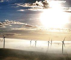 Waubra wind farm is the biggest operated by our company in Australia and one of ones with the highest capacity installed by us worldwide. El parque eólico de Waubra es el mayor que hemos instalado en Australia y uno de los más grandes de nuestra compañía en el mundo.