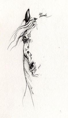 Arabian Horse Original Pen Drawing By Angelhorses On Etsy - Arabian Horse Original Pen Drawing By Angelhorses On Etsy Horse Drawing Arabian Horse Sketch By Angel Ciesniarska See More Horse Portrait Equine Art Equestrian Tattoo Design Framed O Horse Drawings, Animal Drawings, Art Drawings, Horse Head Drawing, Drawing Art, Simple Horse Drawing, Painted Horses, Head Tattoos, Body Art Tattoos