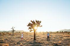 California Dreamin: Joshua Tree #johnnywas Couple Photography, Engagement Photography, Wedding Photography, Photography Ideas, Cute Couple Pictures, Couple Photos, Desert Days, Lovers Pics, Ocean Sunset