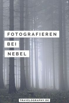 Taking pictures in fog - Fotografie -