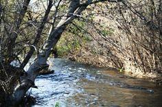 Garland Ranch Regional Park - fabulous# hikes near #Carmel, California. http://www.cheers2wine.com/garland-ranch-regional-park.html