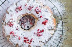 Vianočný veniec - zena.sme.sk