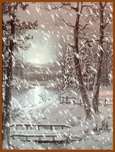 Happy Snowy Holidays: Snowfall in the Woods GIF Happy Holidays. Enjoy this snowfall in the woods GIF. Winter Szenen, I Love Winter, Winter Magic, Winter Christmas, Winter Holidays, Christmas Decor, Winter Pictures, Christmas Pictures, Mery Crismas