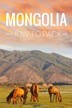 The ultimate guide to packing for Mongolia in the summer, for women!