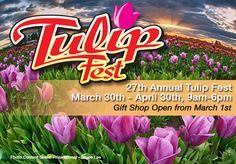 Tulip Fest at the Wooden Shoe tulip farm. I can't wait!