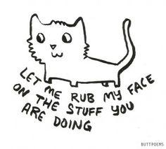 Tekst: herkenbaar voor elke kattenliefhebber.