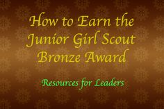 Ideas on how to earn the Bronze Award VIA Scout Leader