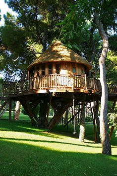 High-Tech Hideaway Tree House. An outstanding and luxurious tree house in James Bond style. The intention was to build a cabin in a tree that would accommodate some seriously fantastic and movie like gadgetry. Located in Athens, Greece.