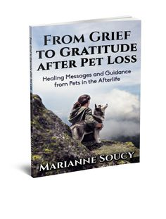 """Marianne Soucy's NEW book """"From Grief to Gratitude after Pet Loss - Healing Messages and Guidance from Pets in the Afterlife"""" is now available on Amazon. Get your copy today https://www.amazon.com/Grief-Gratitude-after-Pet-Loss/dp/1541362721/  (- and afterwards go to http://HealingPetLoss.com and read about our special free event this weekend - 21 january 2017) #petloss #afterlife #grief"""