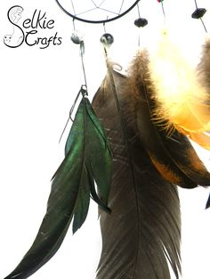 Close up of green shimmer on feathers of black owl dream catcher.