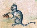 Medieval Bestiary : Mouse Gallery