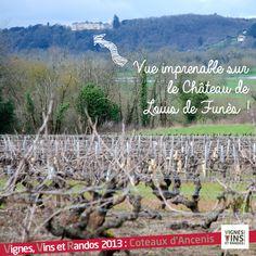 Randonnée coteaux-d'ancenis >> http://www.vignesvinsrandos.fr/fr/rando/4/coteaux-d-ancenis #vignesvinsrando #vinsvaldeloire