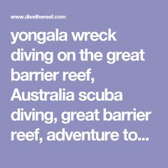 yongala wreck diving on the great barrier reef, Australia scuba diving, great barrier reef, adventure tour Australia, outback, adventure travel, Australia tour, diving Australia, cairns, Port Douglas, scuba diving great barrier reef