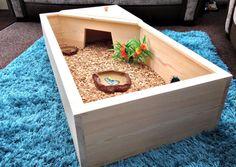 terrario para tortugas de tierra