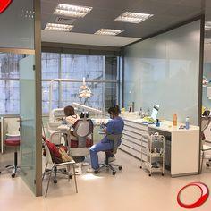 ¿Cuánto tiempo hace que no vas al dentista? www.pnid.es