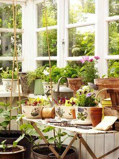 Mom would LOVE those Portmeirion Botanical Garden planters!    desire to inspire - desiretoinspire.net - LouiseRastall