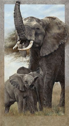 Bordered Canvas Giclees by Val Warner 52