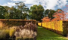 Gardens: balancing act | Dan Pearson | Life and style | The Guardian