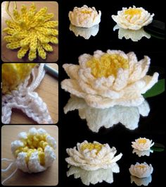 Crochet Pretty Water Lily with Free Pattern (Video)
